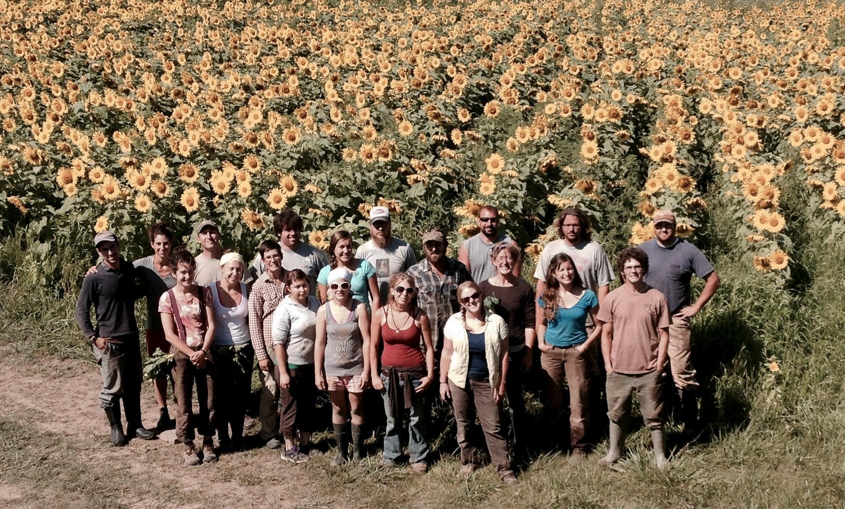 farm employment, Driftless Organics
